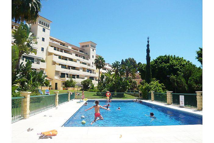 Communal swimming-pool