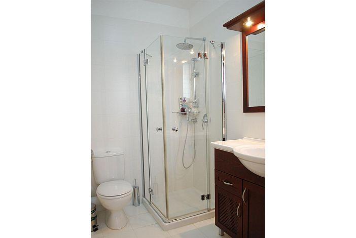 Master bedroom's ensuite shower room