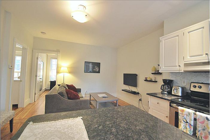 Mt. Vernon St. Unit 2 - Boston Furnished Rental