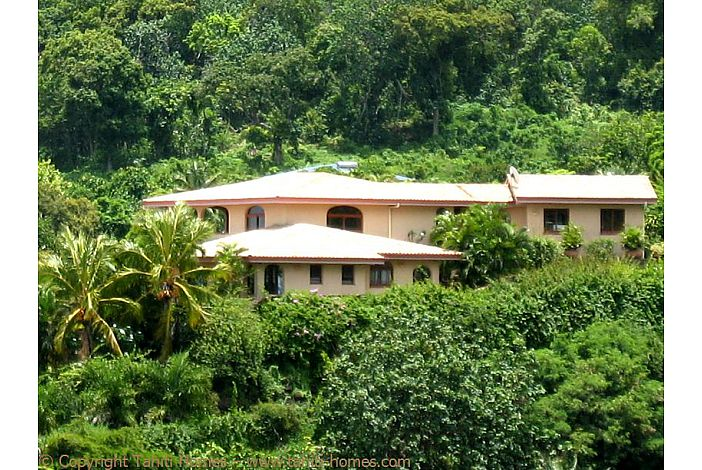 Villa Marama in lush tropical vegetation - Moorea
