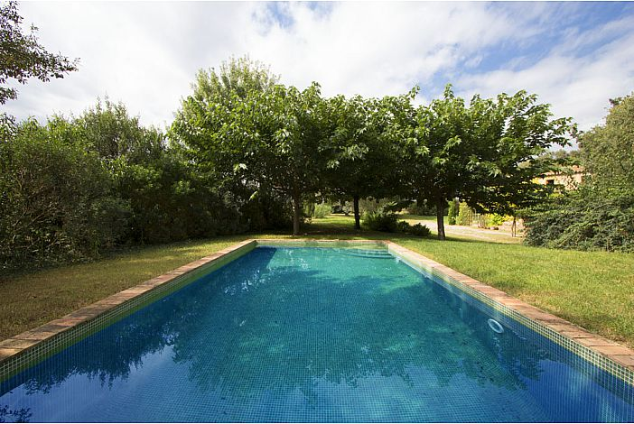 Private pool surrounded by greenery