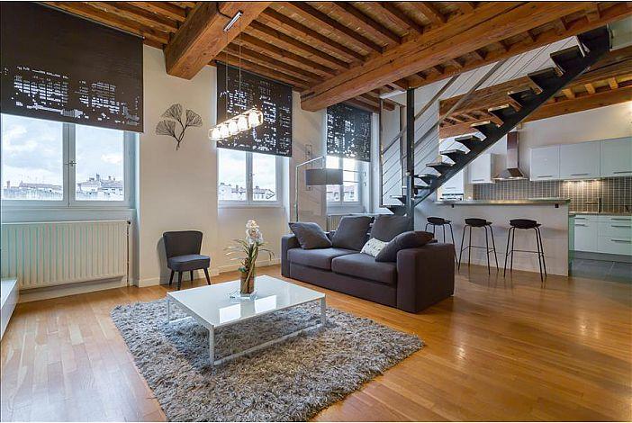 location appartement meuble lyon 4